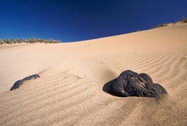 Fuerteventura – Sand, sand, sand