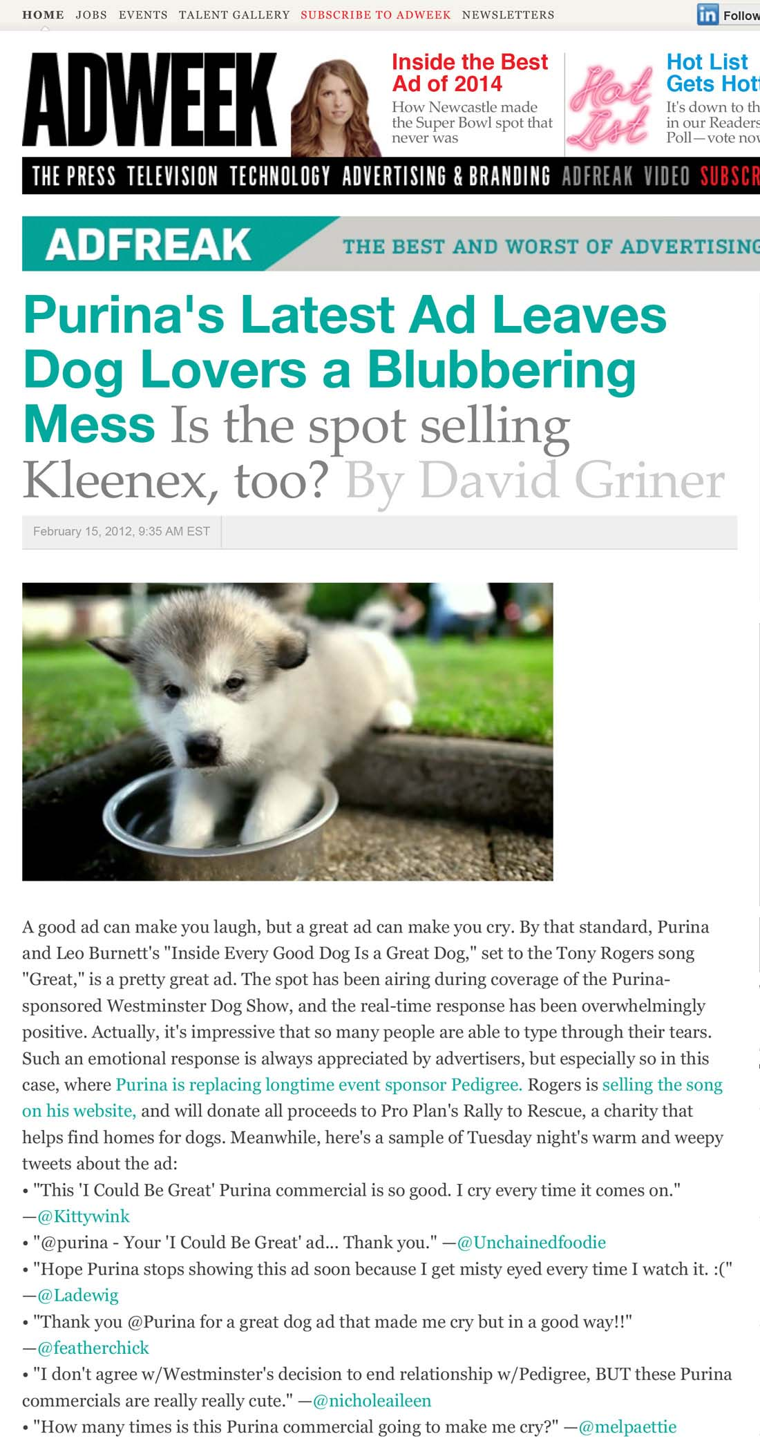 Purina's-Latest-Ad-Leaves-Dog-Lovers-a-Blubbering-Mess-_-Adweek-1