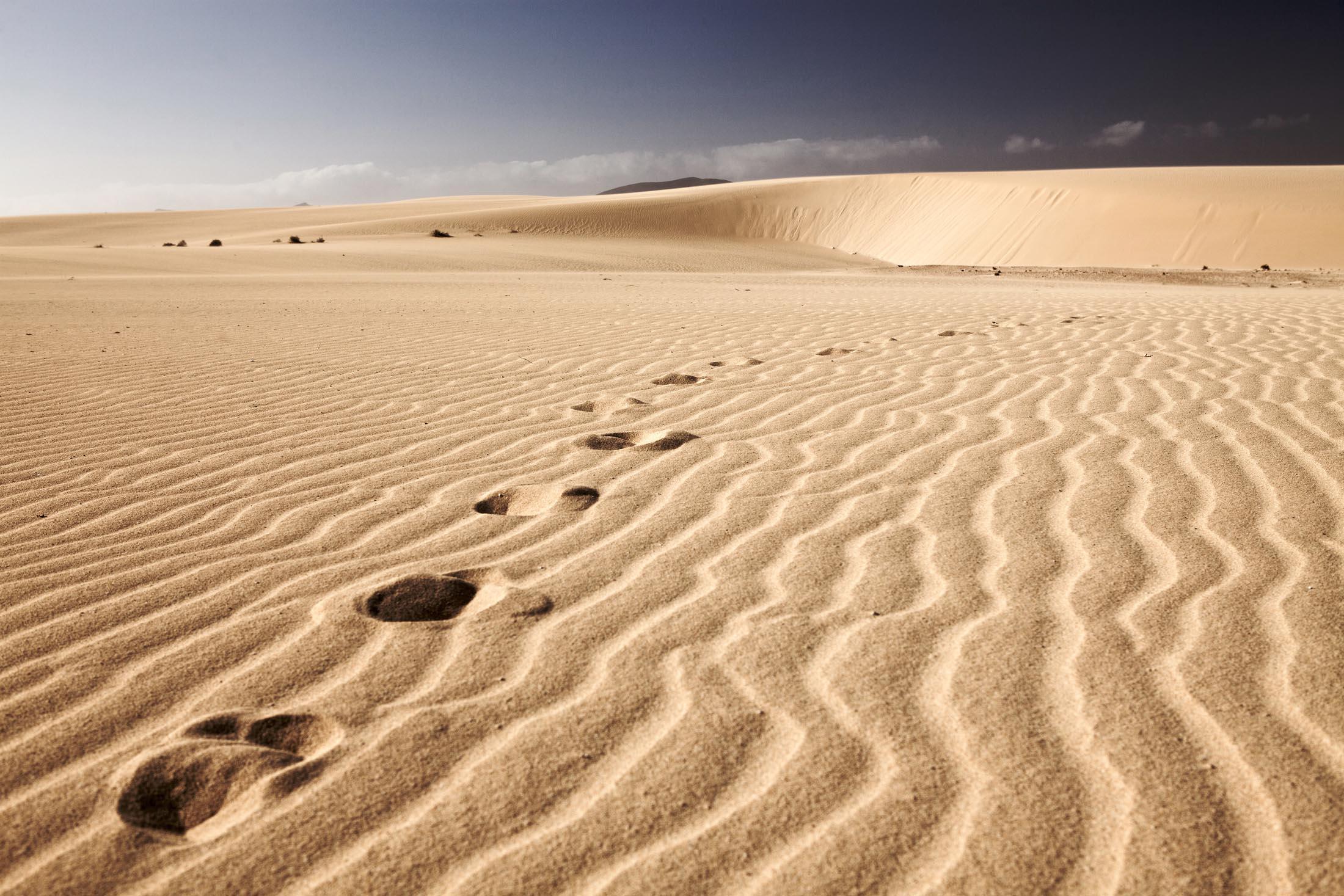 Footsteps in the desert, Fuerteventura
