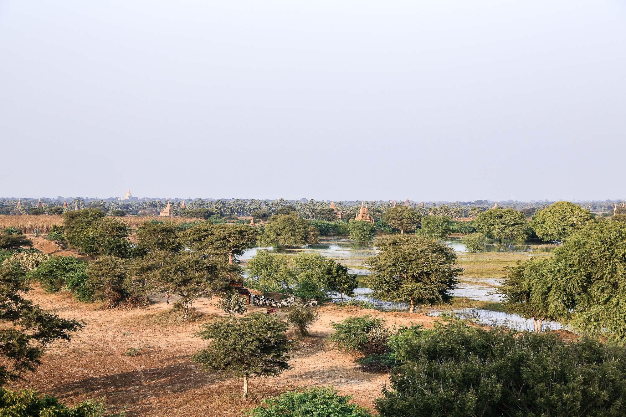 Myanmar_2014_JusMedic-199