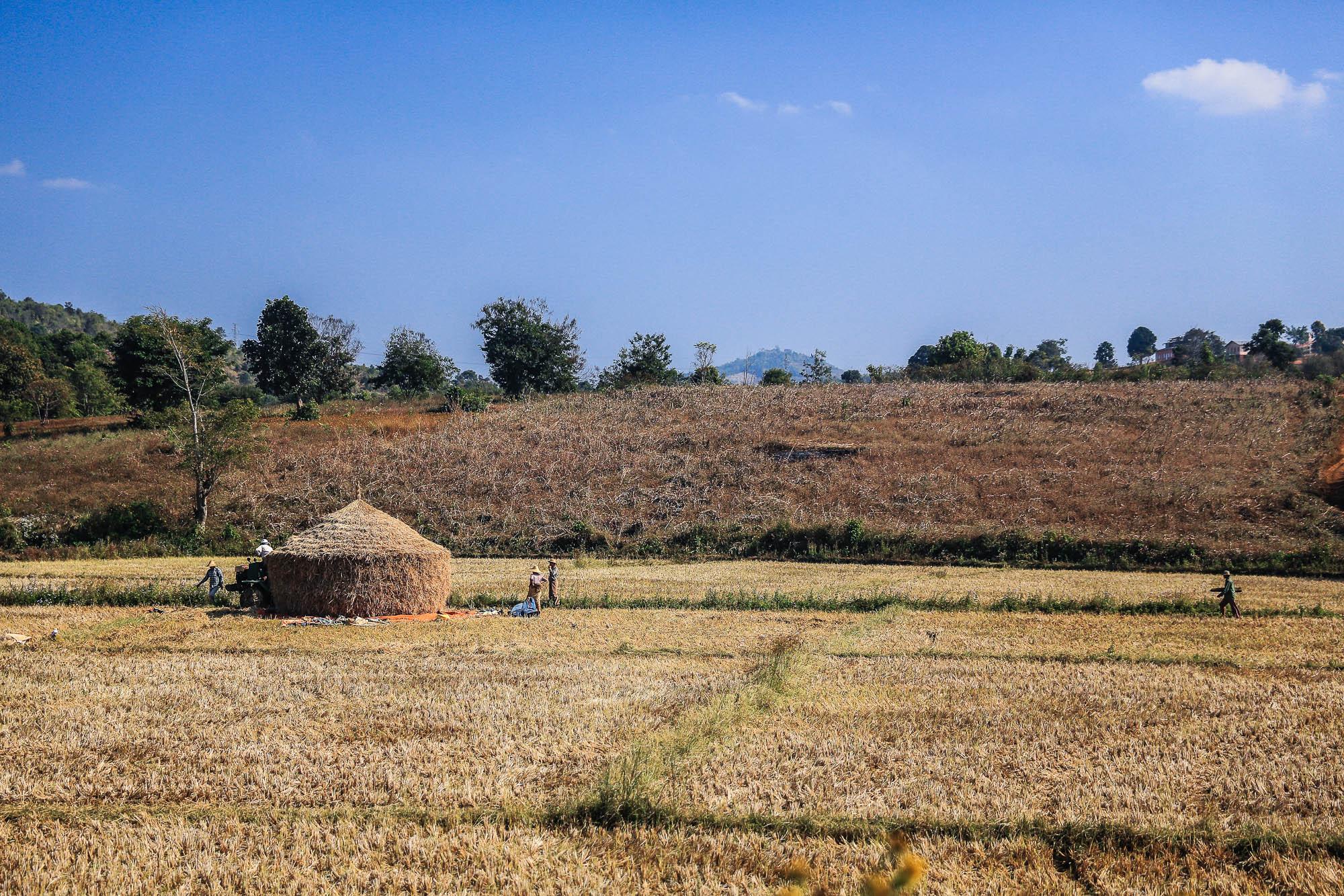 Myanmar_2014_JusMedic-785