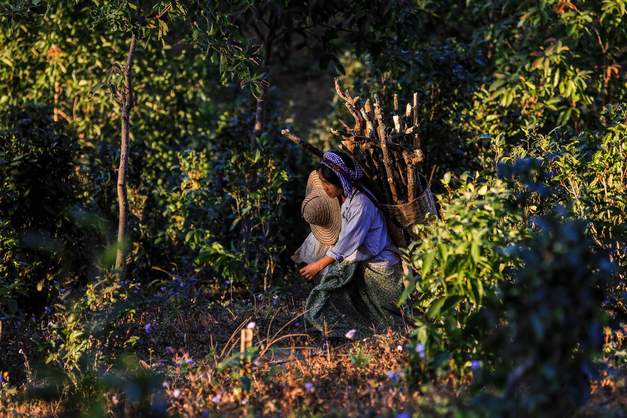Myanmar_2014_JusMedic-949