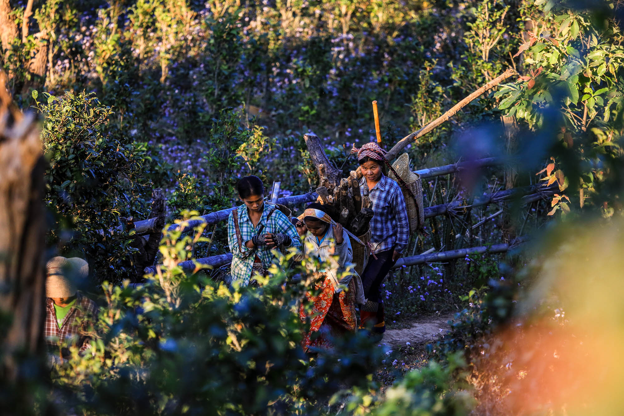 Myanmar_2014_JusMedic-954
