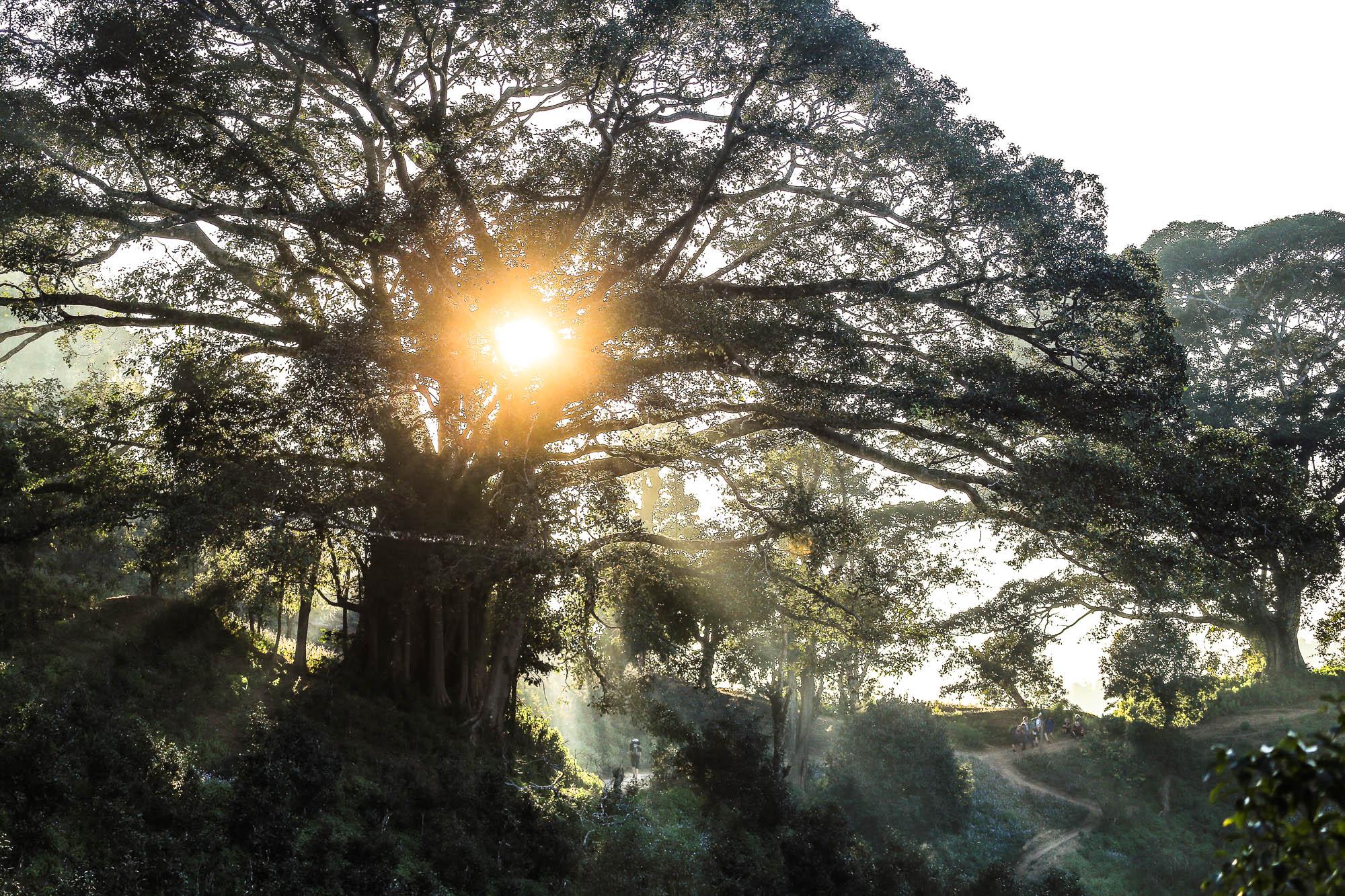 Myanmar_2014_JusMedic-964