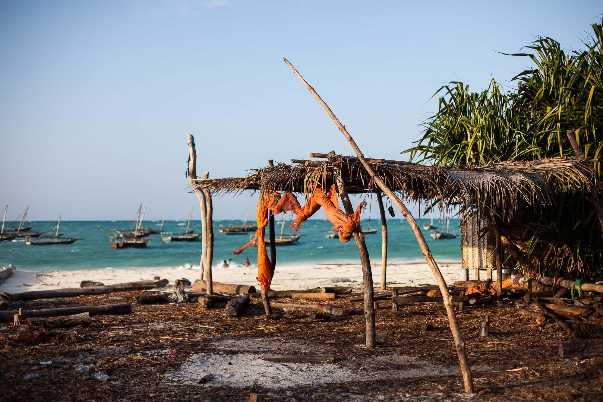 Tanzania 2011 # 4912