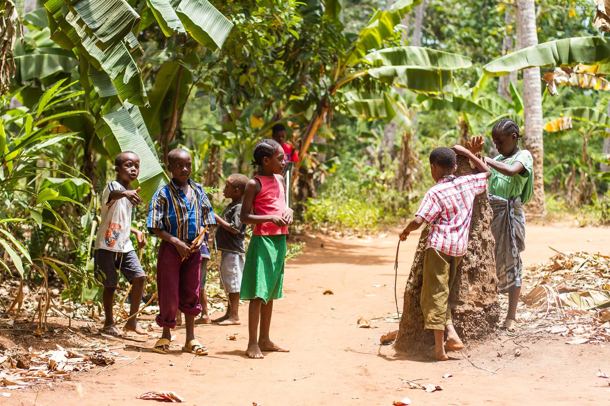 Tanzania 2011 # 5162