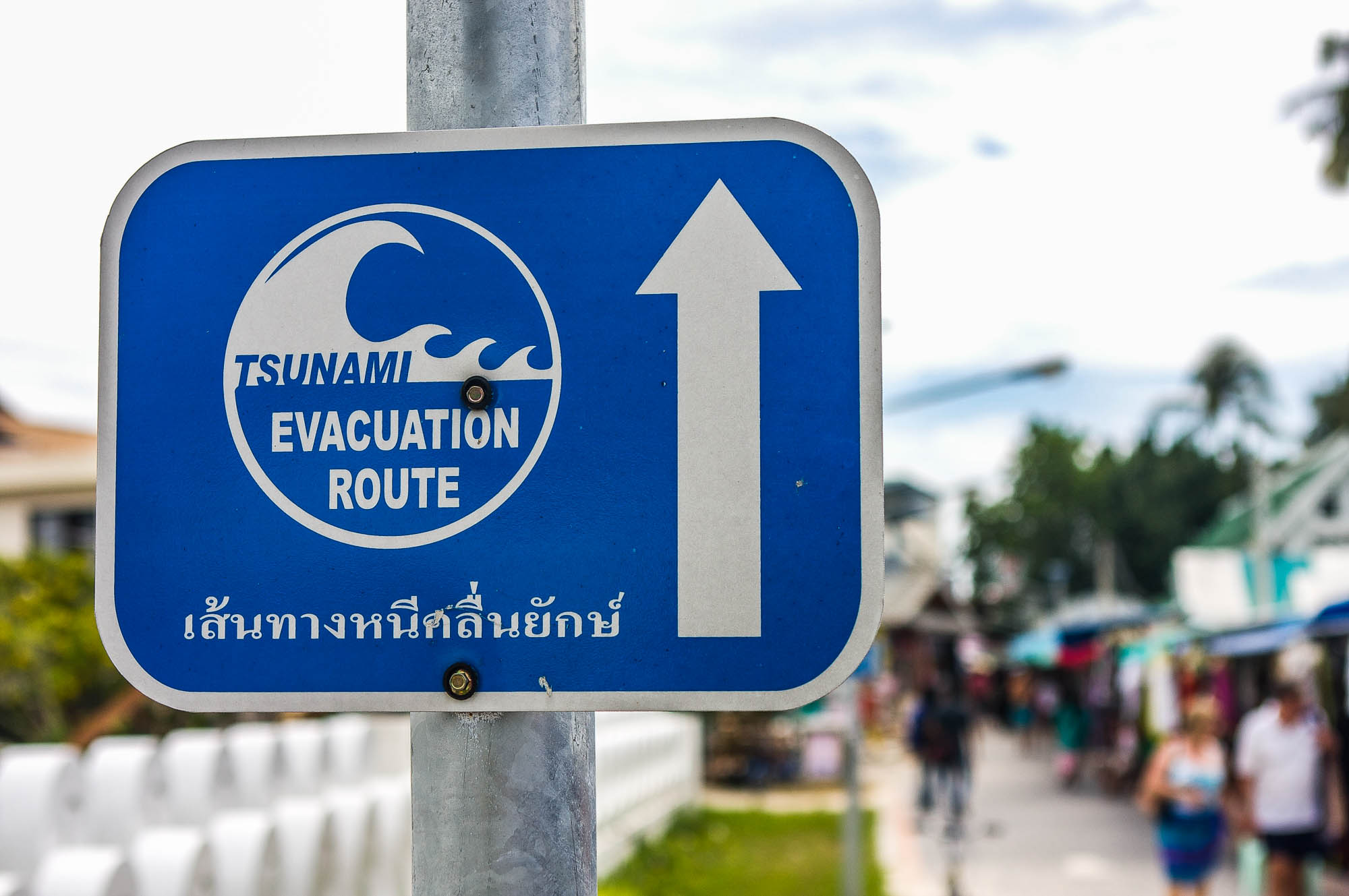 Thailand 96