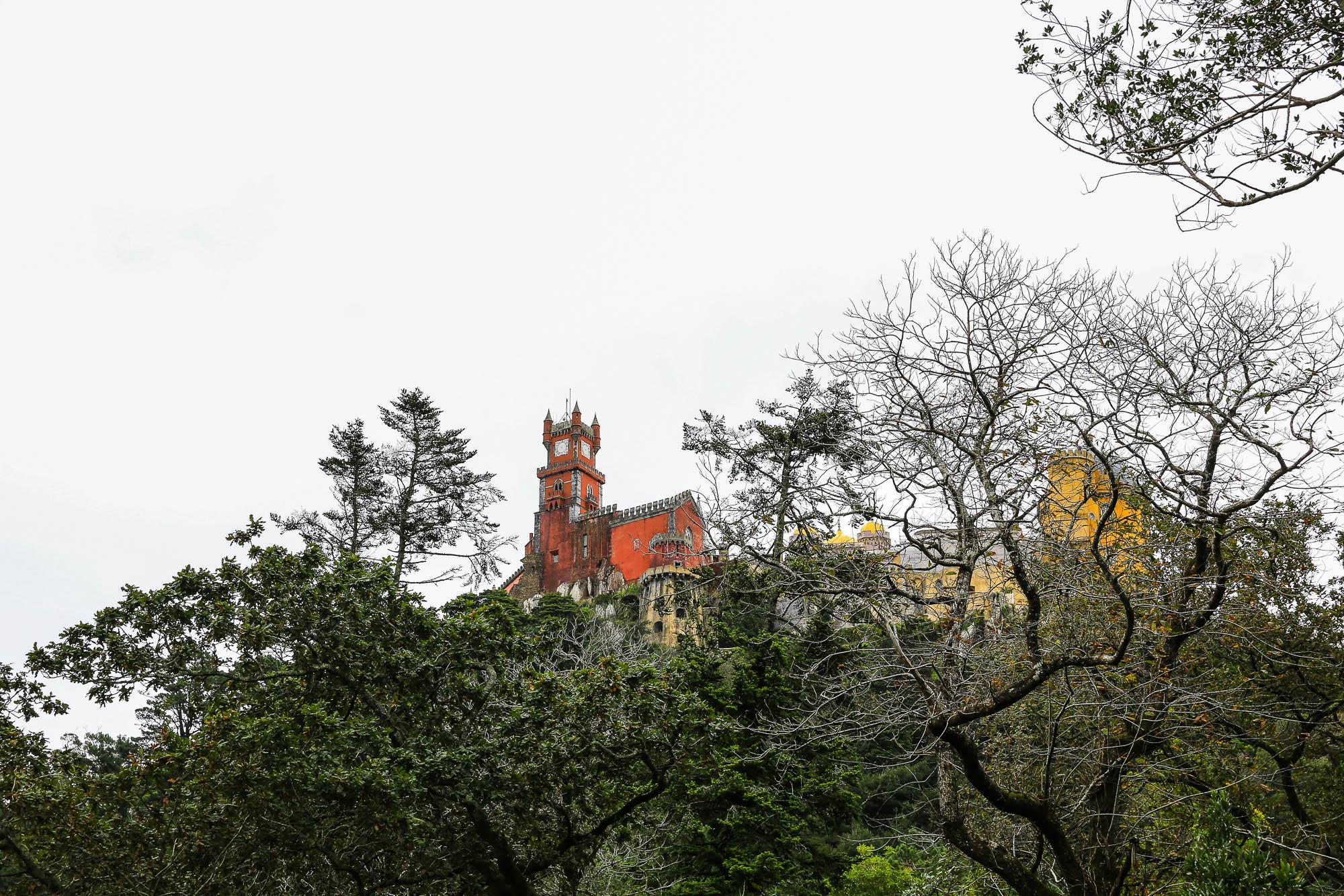 PORTUGAL-2012-jusmedic-#533