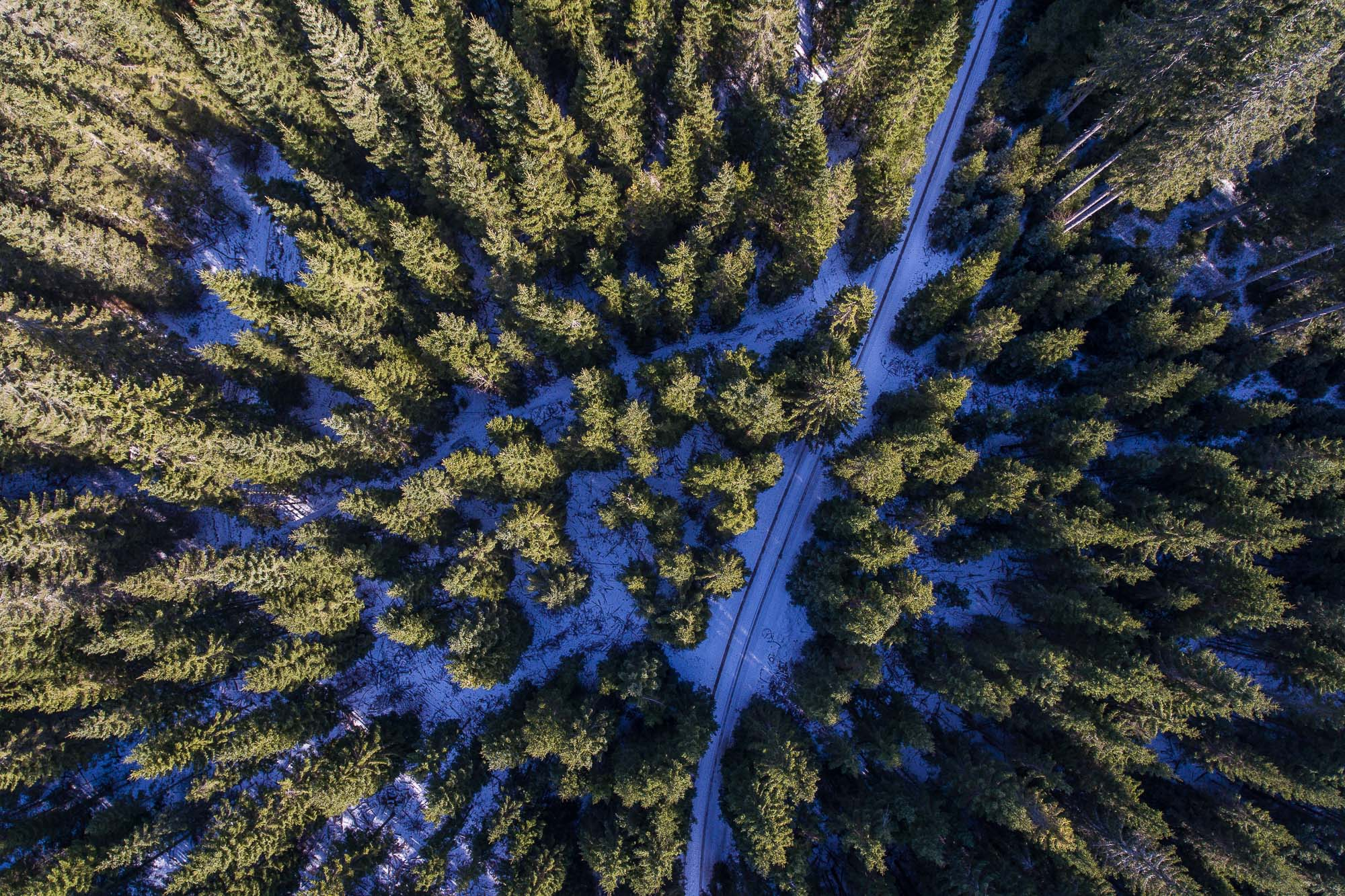 Pokljuka, Slovenia - Aerial - www.jusmedic.com