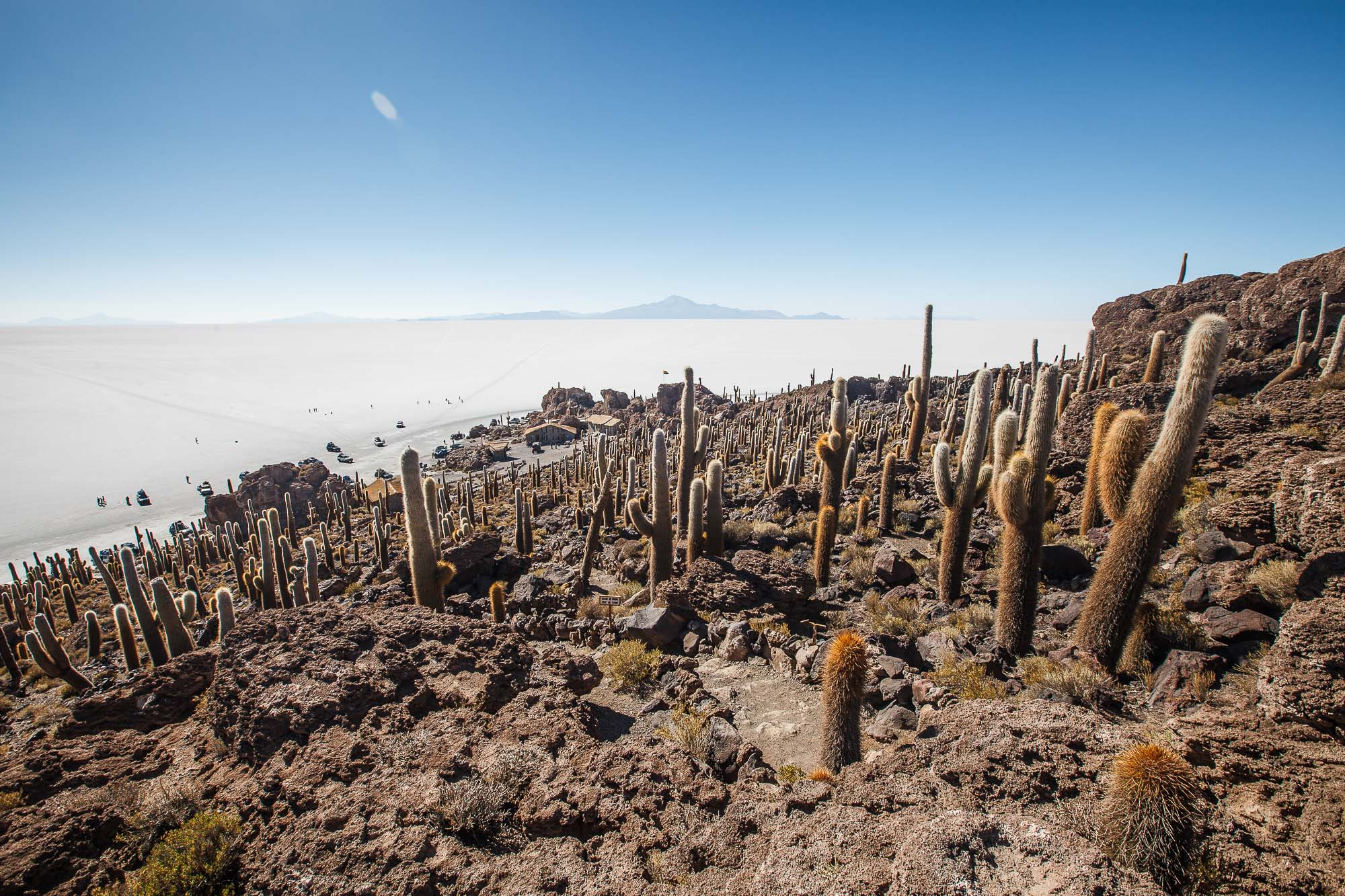 Isla Incahuasi, Bolivia, Salar de Uyuni - www.jusmediic.com